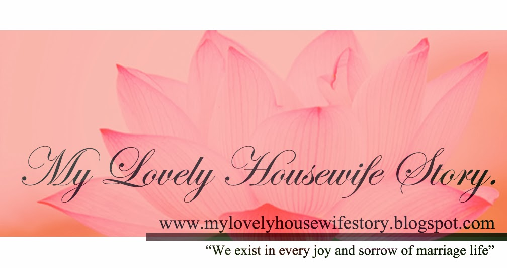 My Lovely Housewife Story