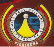XV CAMPEONATO PROVINCIAL DE PICHINCHA