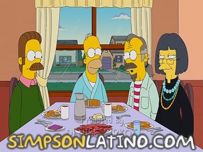 Los Simpson 24x15