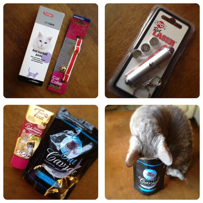 Purrfectbox February Box