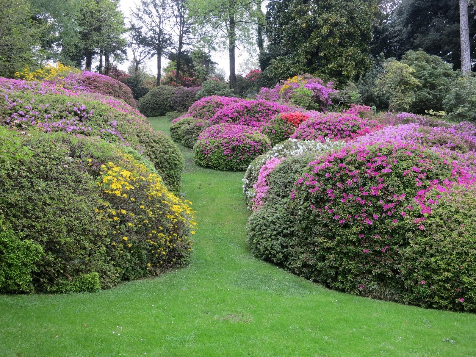 Le blog de parcs et jardins de l 39 oise voyage en italie 5 for Les jardins de la villa