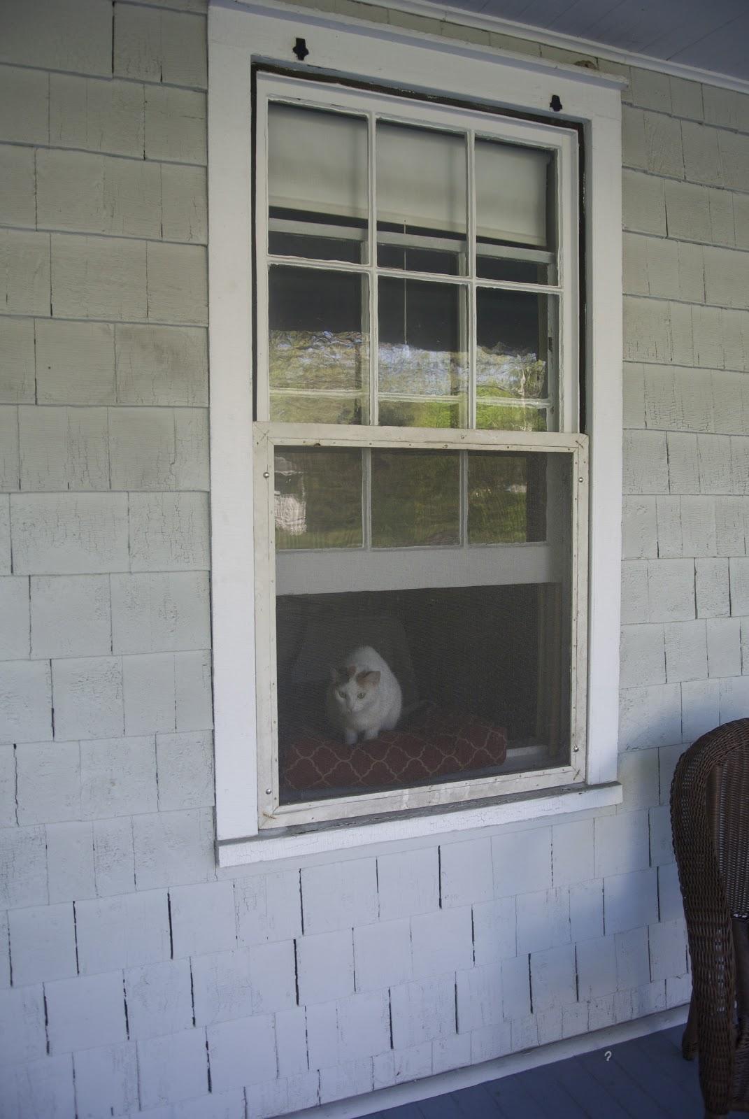 Pdf diy build wood window screens download things to