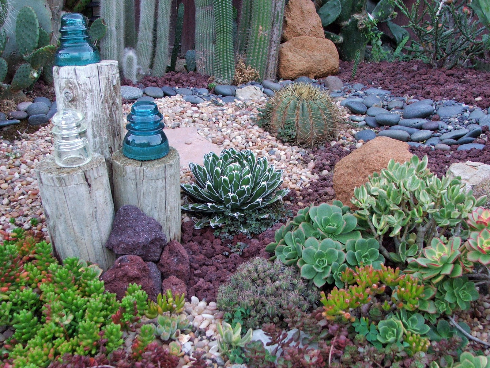 Garden and bliss ocean theme landscaping gallery of photos for Cactus garden designs