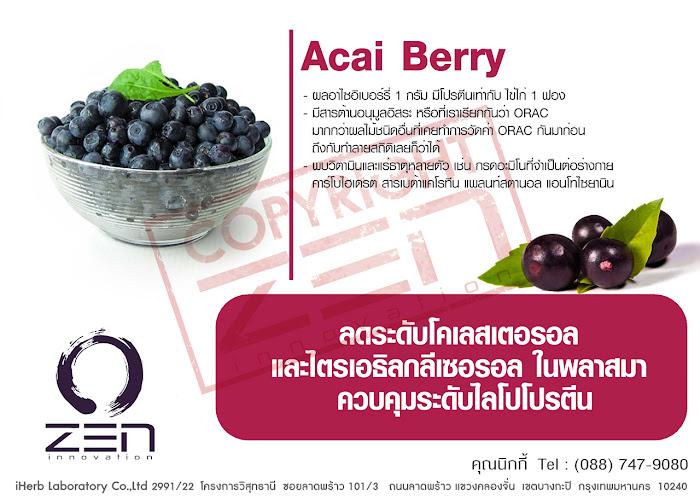 Acai Berry สารสกัดผลิตอาหารเสริม นำเข้าจาก Zen Innovation