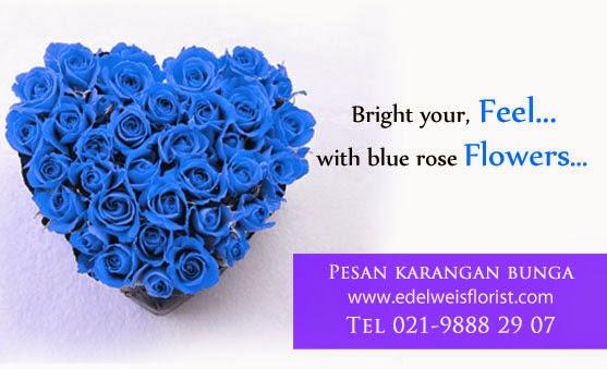 bunga mawar biru, toko bunga