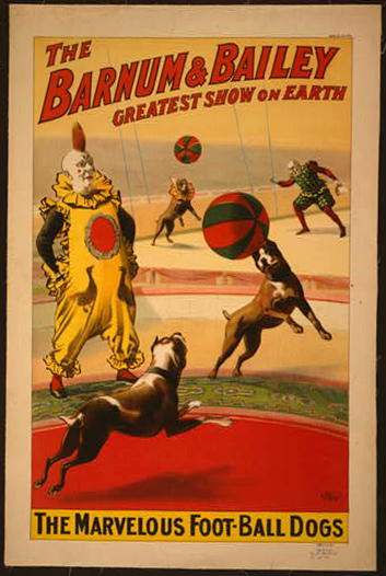 circus, classic posters, free download, graphic design, retro prints, vintage, vintage posters, dog, wildlife, animal poster, Barnum & Bailey, The Marvelous Football Dogs - Vintage Circus Poster