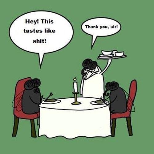 Flies Enjoying Their Meal