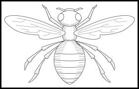 free bee outline to print out