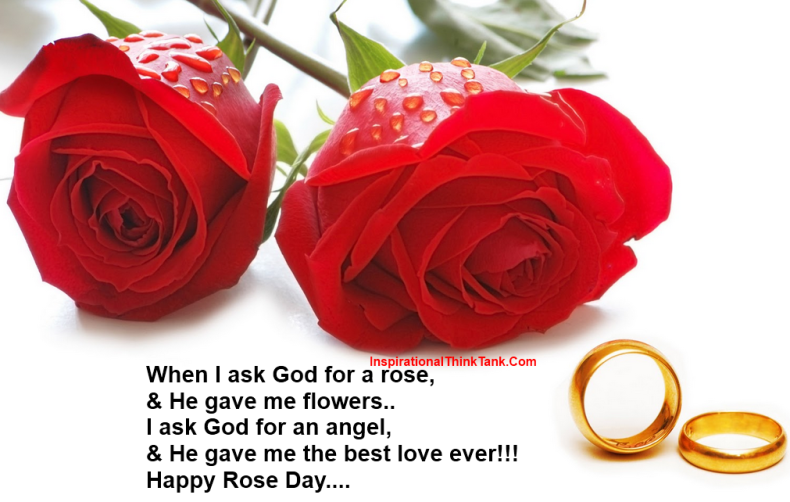 Happy Rose Day Wallpapers, Happy Rose Day Pictures, Happy Rose Day Images, Happy Rose Day Wishes