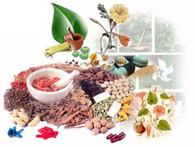аюрведические препараты для похудения