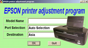 Error Message on Epson Printer T13 and How to Resolve