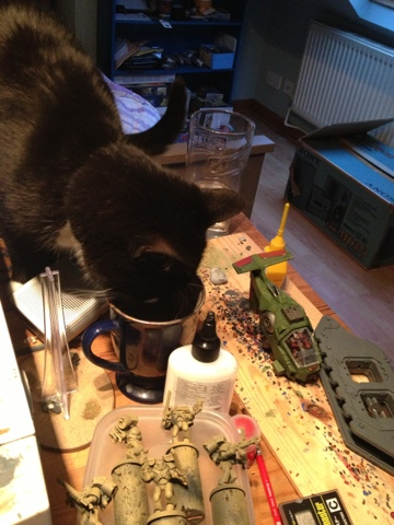 40k cat tries to drinj paint water