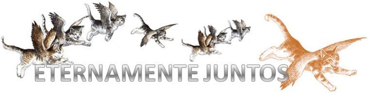 ETERNAMENTE JUNTOS