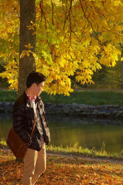autumn, Stockholm,sweden,swedia,travel,autumn experience,musim gugur, djurgarden