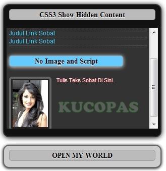 Cara Membuat CSS3 Full Animated Show Hidden Content Onmouseover Di Blog