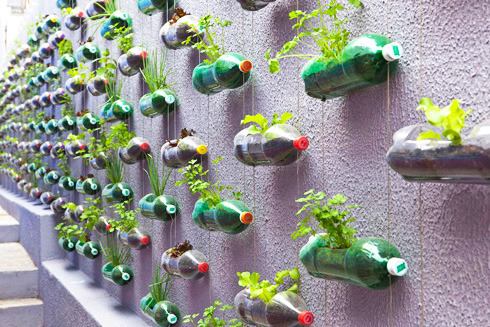 self+watering+containers.jpg (490×327)