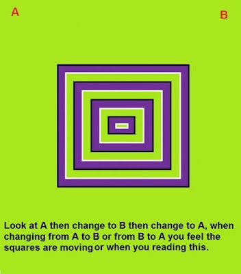 Moving Squares Optical Illusion