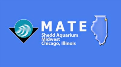 MATE ROV Chicago regional competition