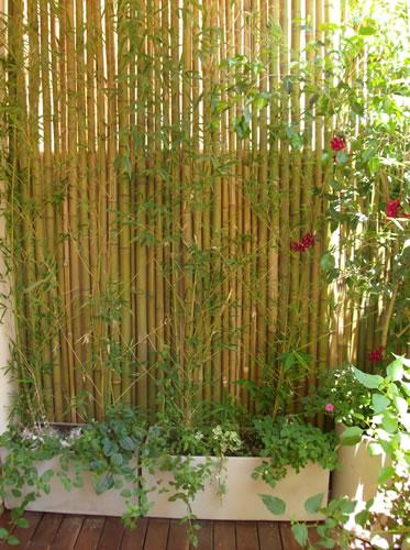 Arte y jardiner a superficies verticales materiales for Jardines verticales con madera