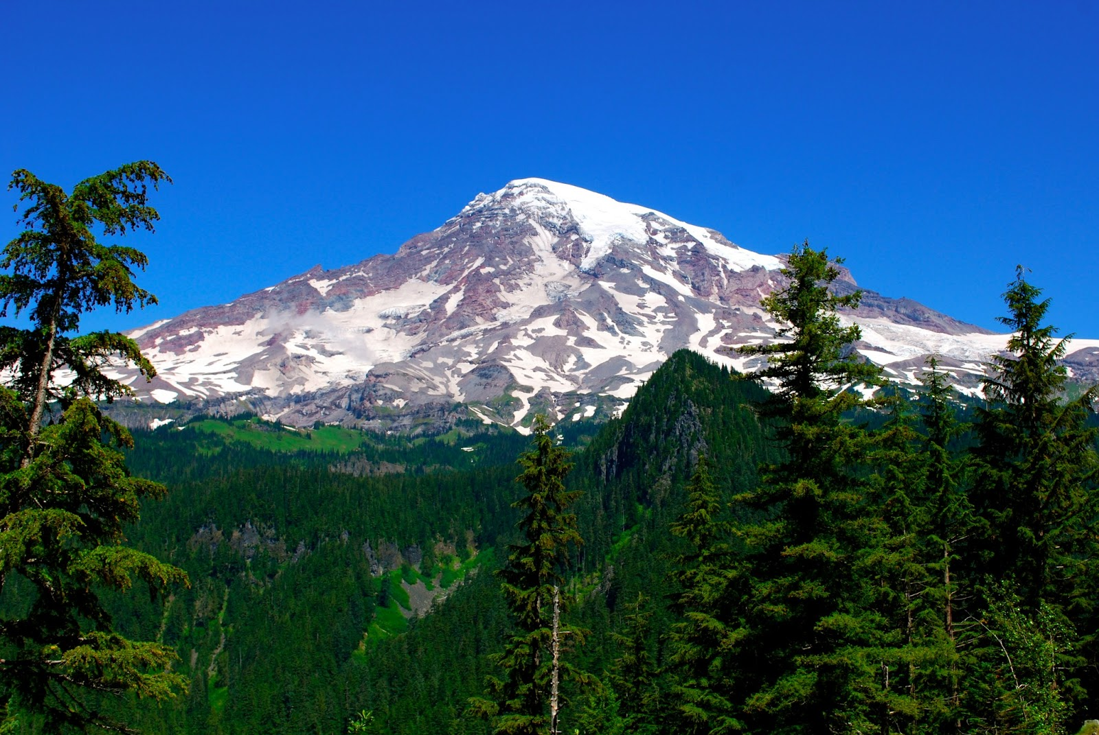 Wanderlust Traveler: Mount Rainier National Park