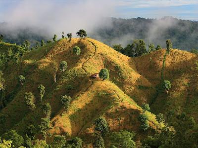Золотые поля в Бандарбан