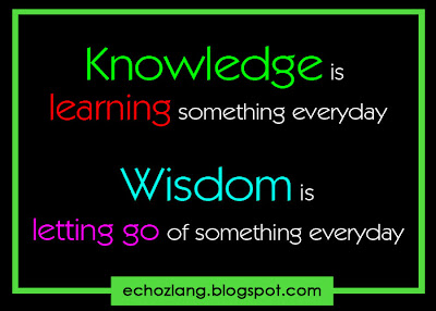 Knowledge is learning something everyday. Wisdom is letting go of something everyday.