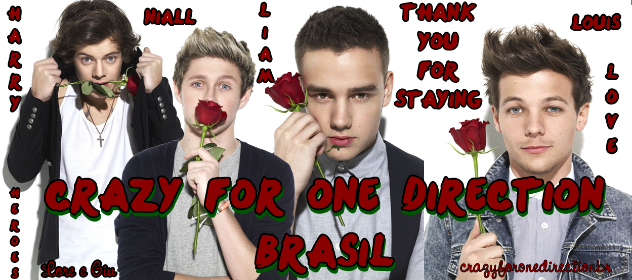 Crazy For One Direction Brasil