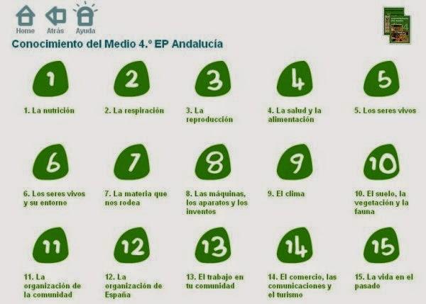 M.J. RECURSOS (P.T Y A.L): CONOCIMIENTO DEL MEDIO CUARTO DE PRIMARIA