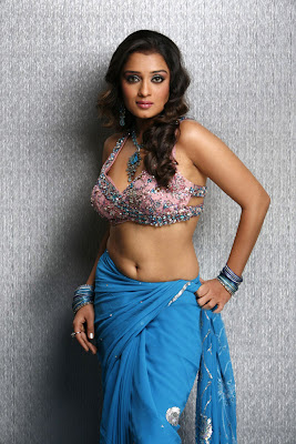Tollywood Actress Nikitha Hot Saree Navel Show Photos Gallery
