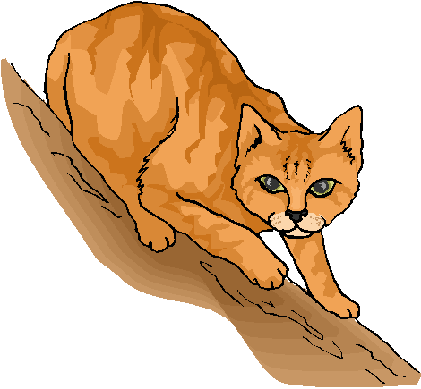 Yellow Funny Cat Free Clipart