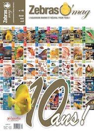 ZebrasO'mag N°40