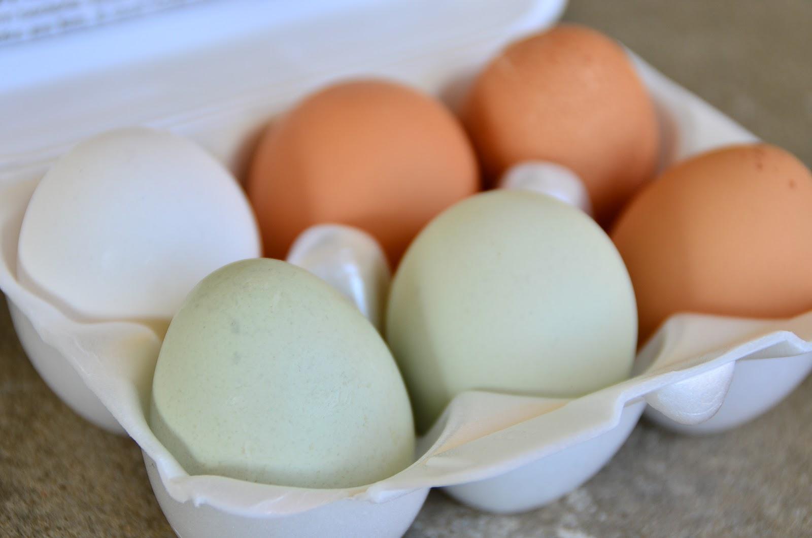 Тухлые яйца - ЯПлакалъ 34