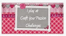 craft your passion challenges