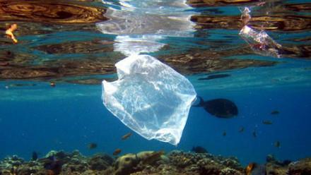 ขยะพลาสติกในทะเลต้นกำเนิไมโครพลาสติกปนเปื้อนในเกลือทะเล