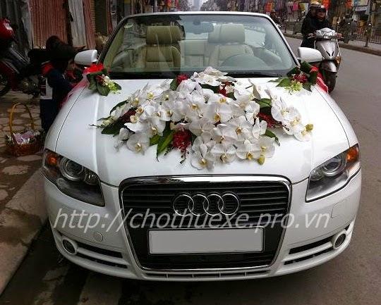 Cho thuê xe cưới Audi A4 - xe cưới mui trần tại Hà Nội
