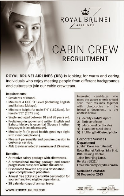 resume of air hostess