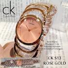 CK S13