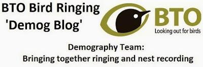BTO Bird Ringing - 'Demog Blog'