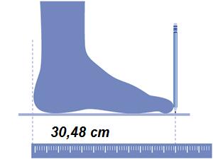 Equivalencia de 1 pie
