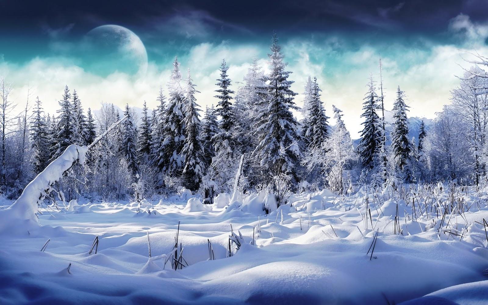 http://4.bp.blogspot.com/-pvLszun8Kw8/UGJm5FfTGZI/AAAAAAAABBI/Dcglbb1f8N4/s1600/iarna1.jpg