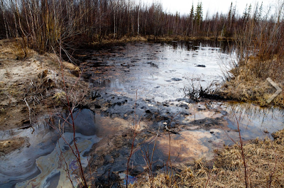 Russia's hidden artic nightmare which shows how polluted the landscape is up there, largely because big oil has polluted it so badly