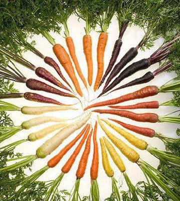 英國 彩虹蘿蔔