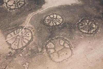 Les géoglyphes Structures_oasis_azraq