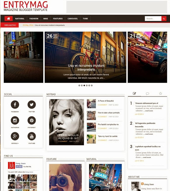 EntryMag Blogger Template