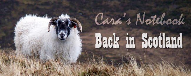 Cara's Notebook: Back in Scotland