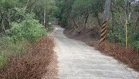 道路兩側噴過除草劑回報