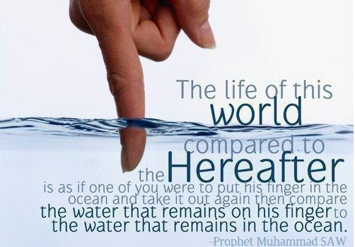 Islam Quotes About Life Love Women Forgiveness Patience Life And