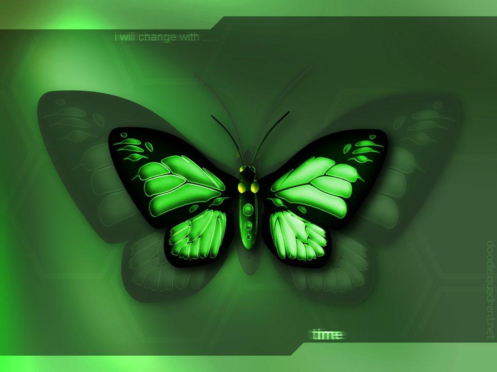 http://4.bp.blogspot.com/-pw7A7ES56qw/ToJCP2HkC0I/AAAAAAAAAEA/VqEbxx7uj2A/s1600/3d+butterfly+wallpaper.jpg