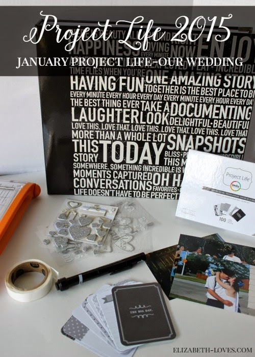 January Recap of Project Life 2015