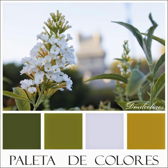 dmilcolores